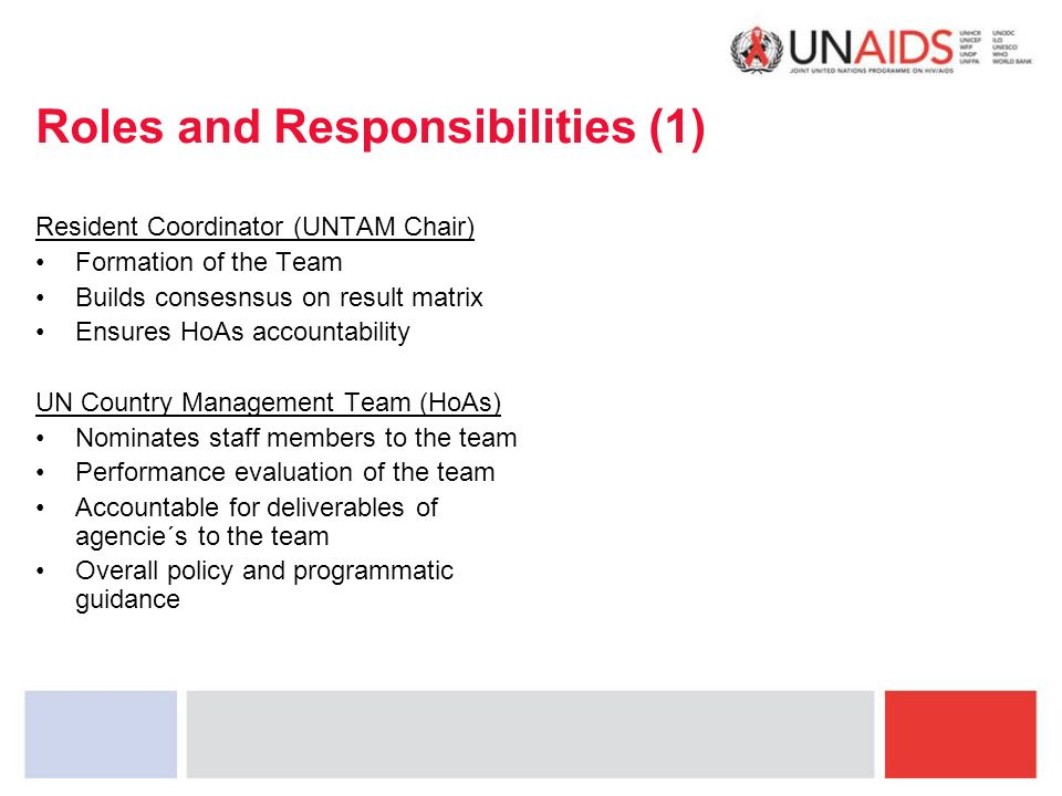 Roles and Responsibilities (1) Resident Coordinator (UNTAM Chair) Formation of the Team Builds consesnsus on result matrix Ensures HoAs accountability UN Country Management Team (HoAs) Nominates staff members to the team Performance evaluation of the team Accountable for deliverables of agencie´s to the team Overall policy and programmatic guidance