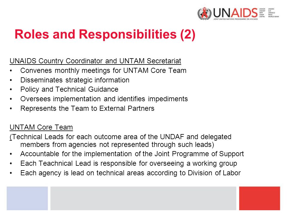 Roles and Responsibilities (2) UNAIDS Country Coordinator and UNTAM Secretariat Convenes monthly meetings for UNTAM Core Team Disseminates strategic information Policy and Technical Guidance Oversees implementation and identifies impediments Represents the Team to External Partners UNTAM Core Team (Technical Leads for each outcome area of the UNDAF and delegated members from agencies not represented through such leads) Accountable for the implementation of the Joint Programme of Support Each Teachnical Lead is responsible for overseeing a working group Each agency is lead on technical areas according to Division of Labor