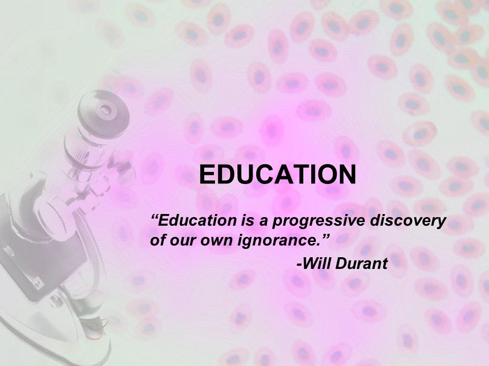 Education Education Is A Progressive Discovery Of Our Own Ignorance
