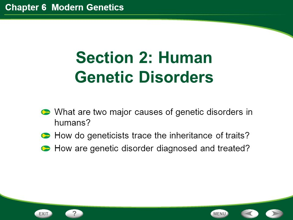 Chapter 6 Modern Genetics Section 2 Human Genetic Disorders What