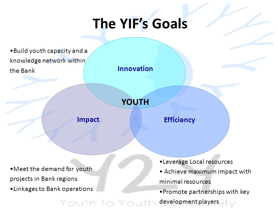 The YIF's Goals Leverage Local resources Achieve maximum impact with minimal resources Promote partnerships with key development players Meet the demand for youth projects in Bank regions Linkages to Bank operations Build youth capacity and a knowledge network within the Bank Innovation Impact Efficiency YOUTH
