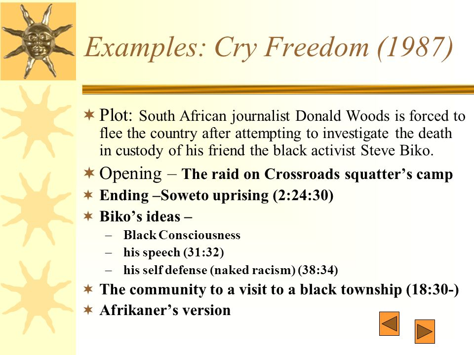 cry freedom plot