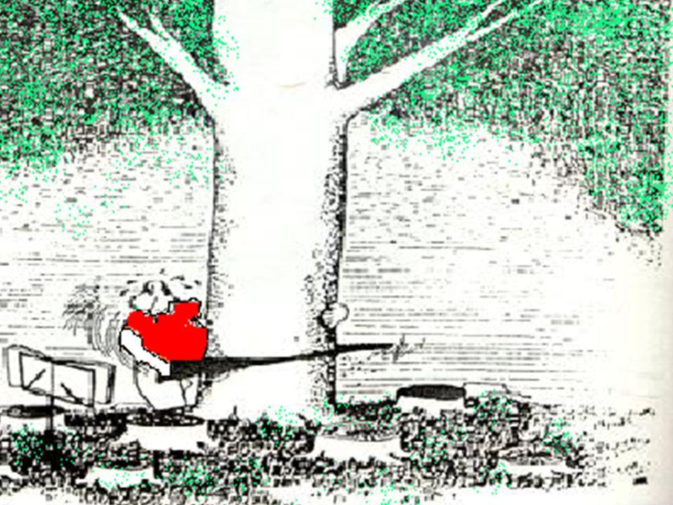 short speech on trees