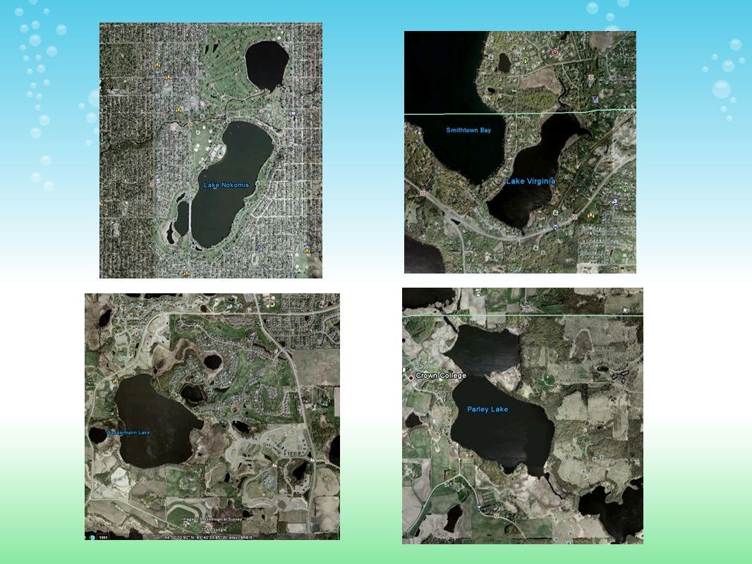 TMDL Critique: MCWD Lakes TMDL – Lake Nokomis, Parley Lake