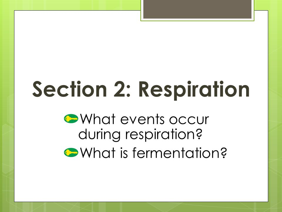 What events occur during respiration What is fermentation Section 2: Respiration