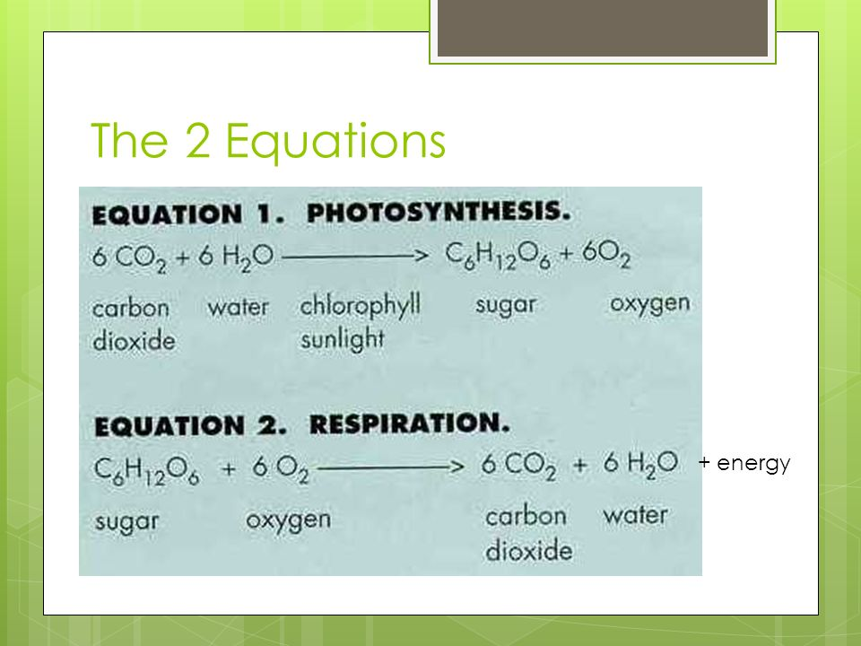 The 2 Equations + energy