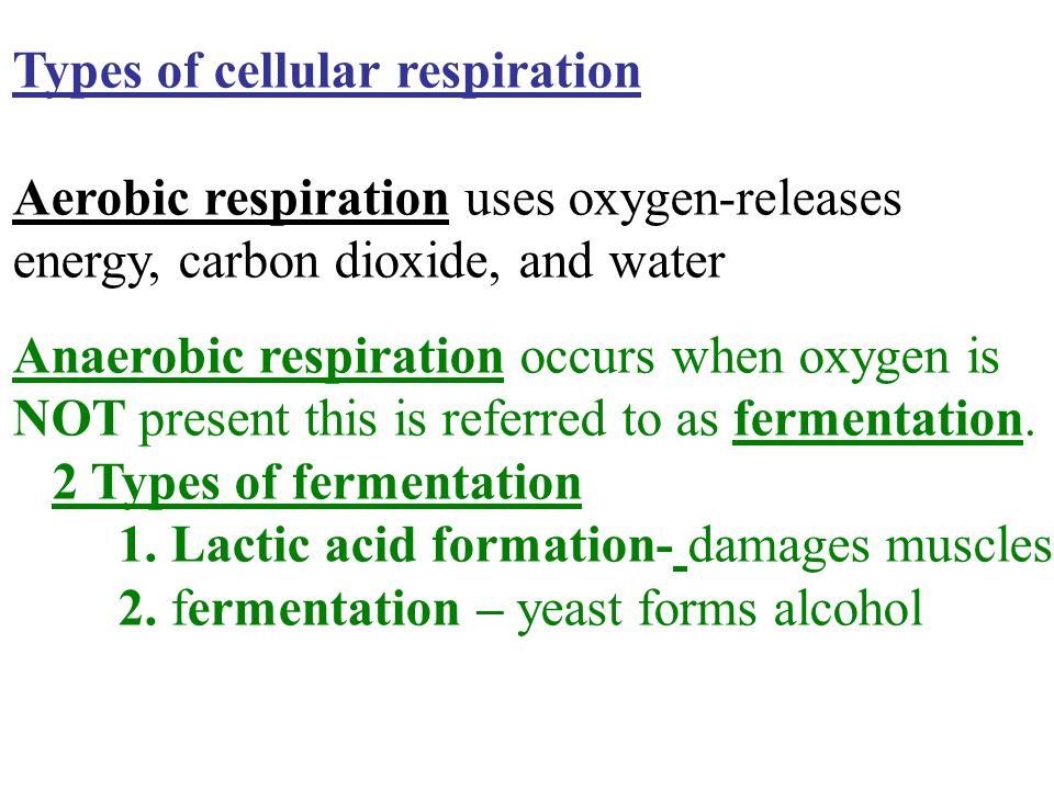 Types of cellular respiration Aerobic respiration uses oxygen-releases energy, carbon dioxide, and water Anaerobic respiration occurs when oxygen is NOT present this is referred to as fermentation.
