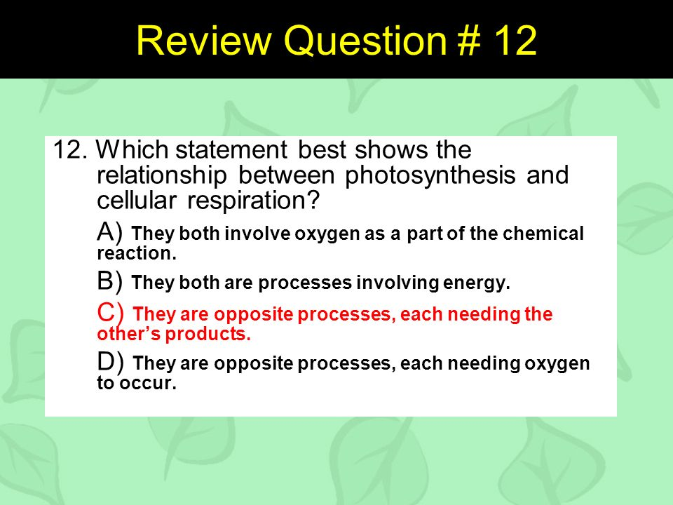 why are cellular respiration and photosynthesis opposite processes