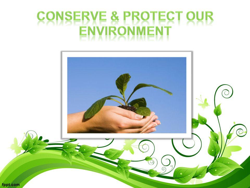 save trees essay wikipedia