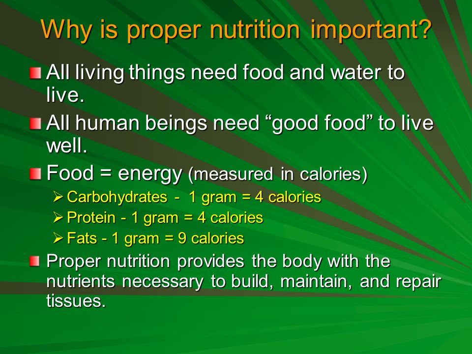 Why Is Proper Nutrition Important All Living Things Need Food And Water To Live