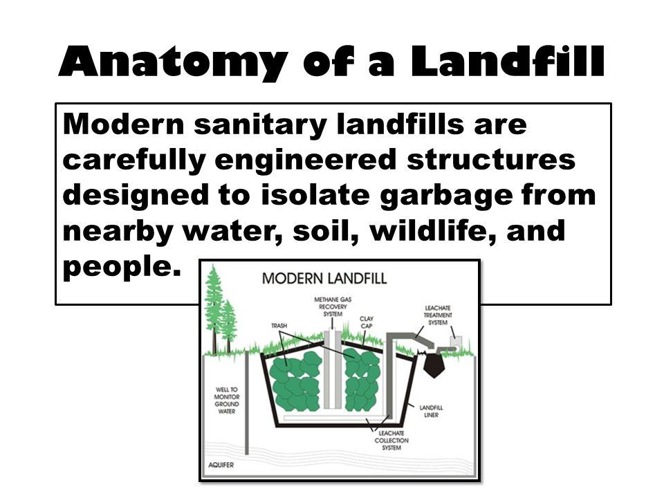 Anatomy Of A Landfill Choice Image Human Anatomy Diagram Organs