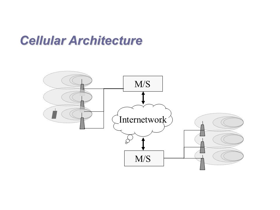 Cellular Architecture M/S Internetwork M/S