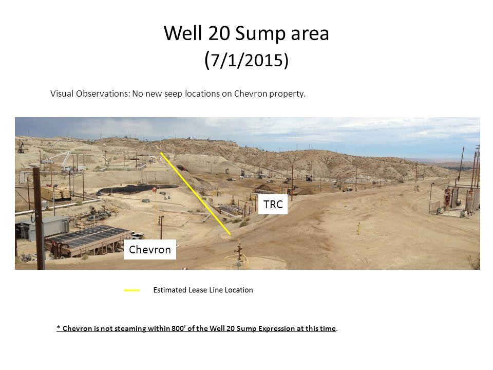 MWSS Diatomite 21S Weekly Update Chevron Reporting Period: 6
