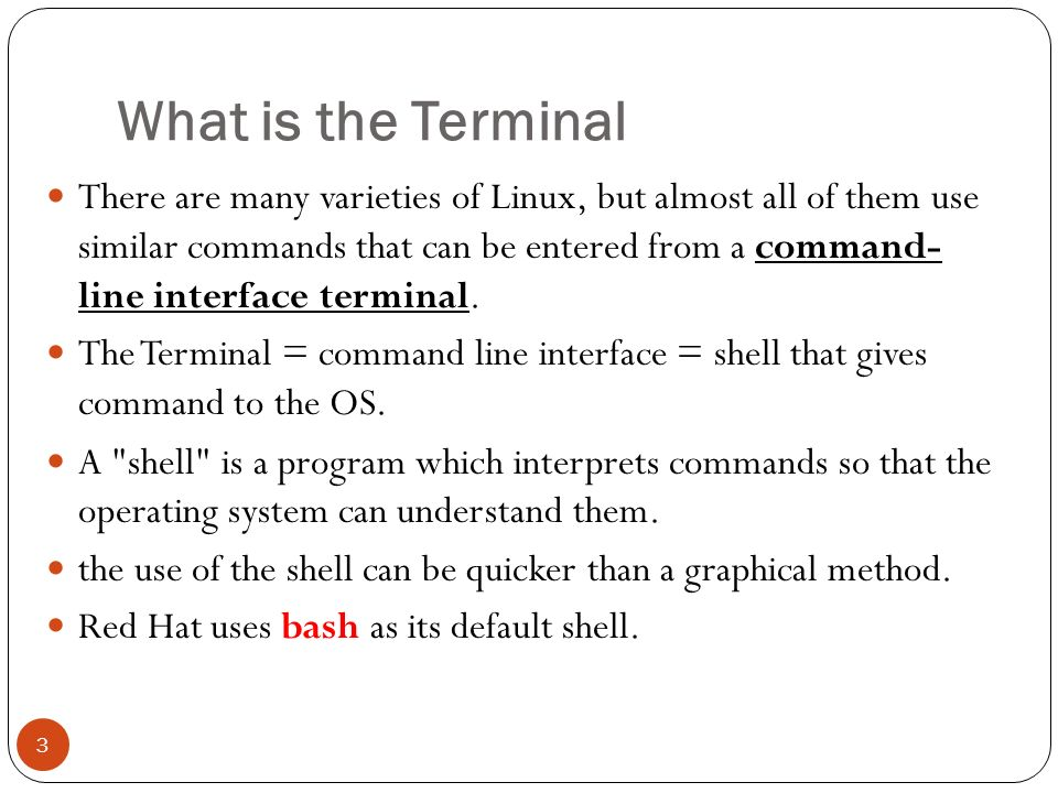 Lab 3 + Using the Terminal 1