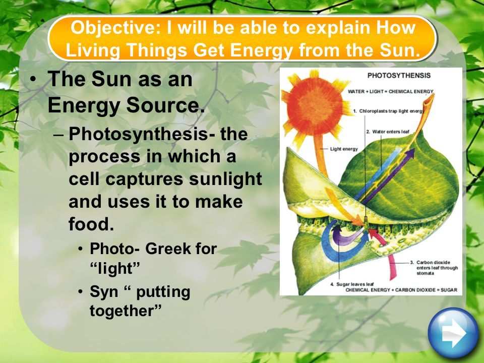 The Sun as an Energy Source.