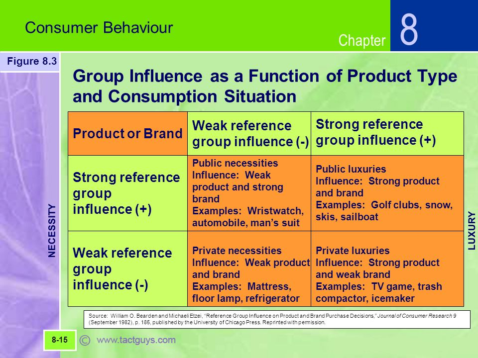 Social class, family, reference group influence on consumer decisi.