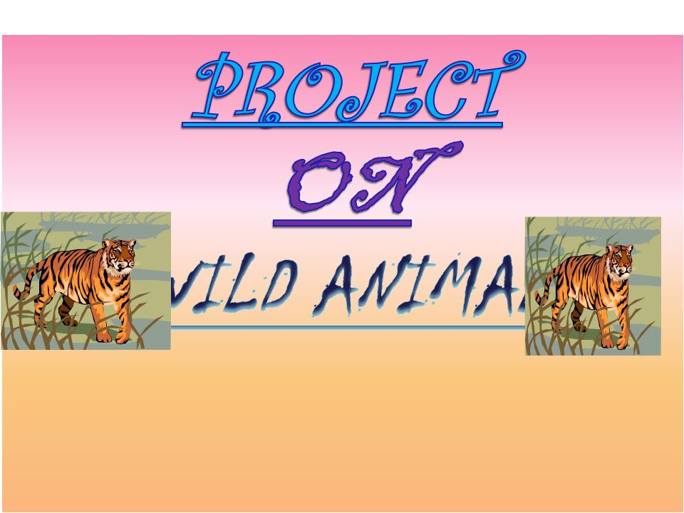 Wild animals of India : Different types of wild animals are