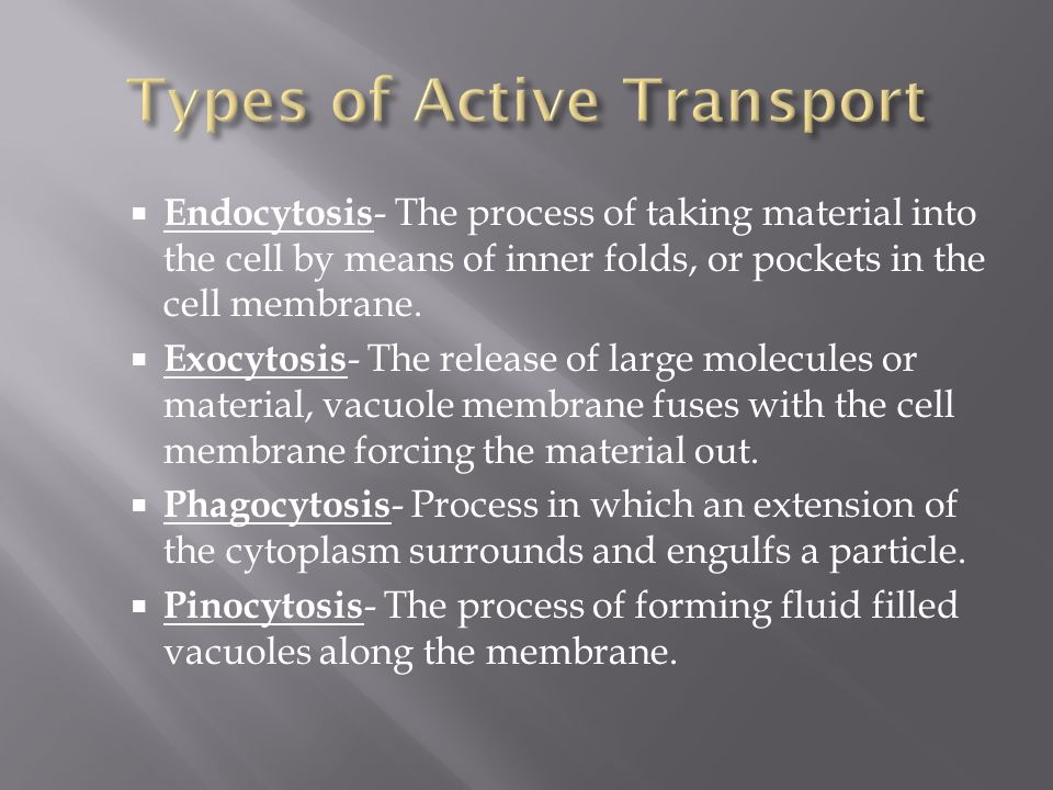  Endocytosis - The process of taking material into the cell by means of inner folds, or pockets in the cell membrane.