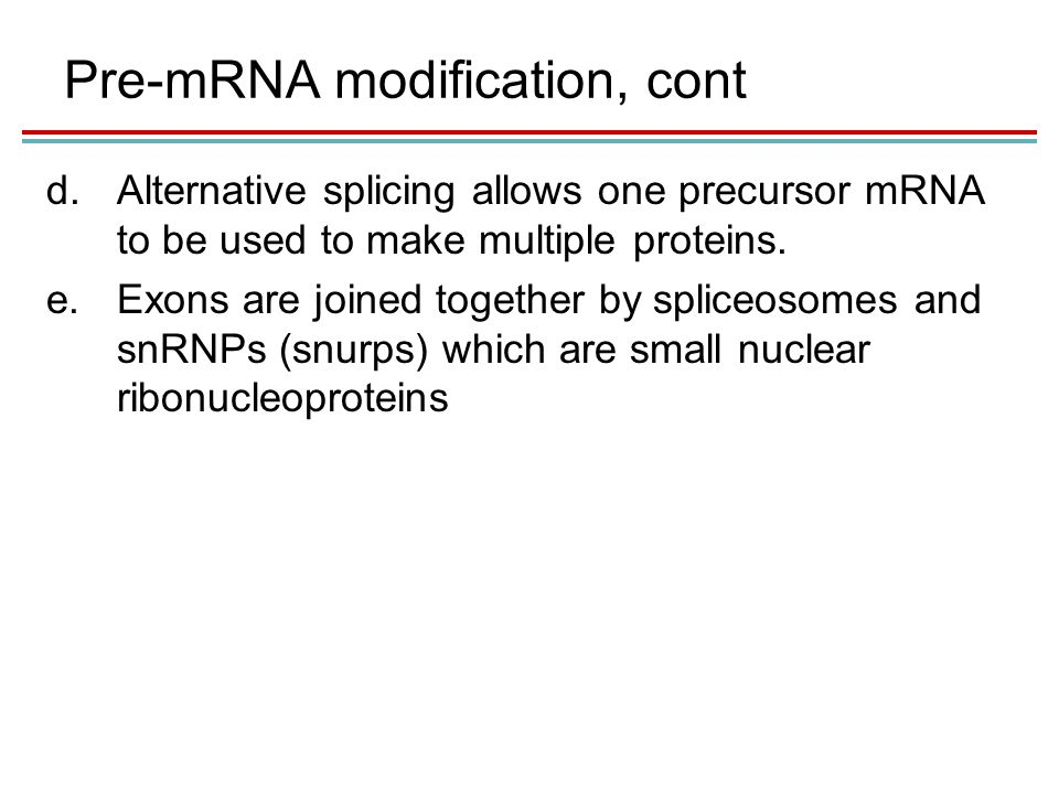 Pre-mRNA modification, cont d.Alternative splicing allows one precursor mRNA to be used to make multiple proteins.