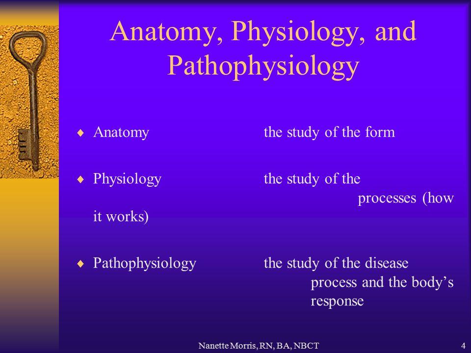 Nanette Morris, RN, BA, NBCT1 Anatomy & Physiology Health Careers ...