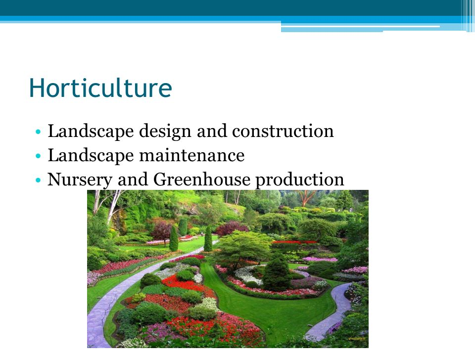 5 Horticulture Landscape Design And Construction Maintenance Nursery Greenhouse Production