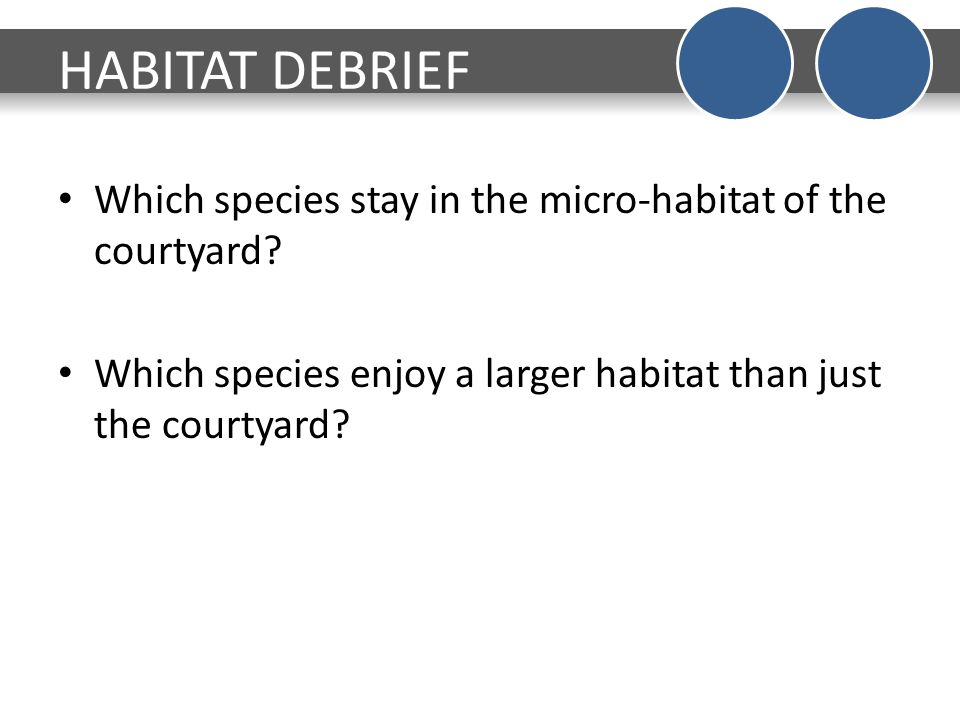difference between habitat and microhabitat
