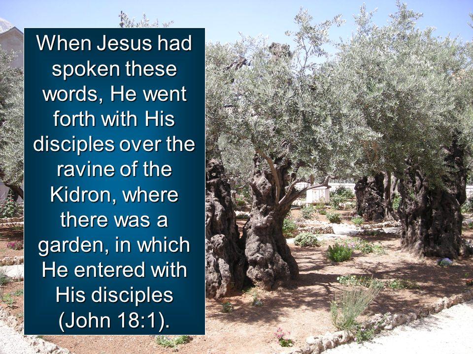 Kuvahaun tulos haulle John 18:1