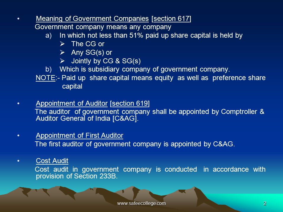 audit of government companies