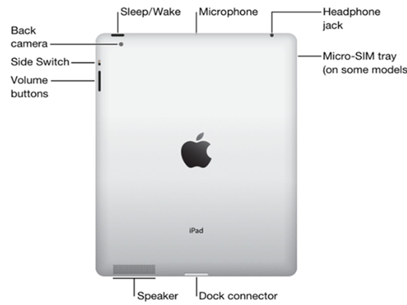 Mini Ipad Buttons Diagram Reinvent Your Wiring 1 Trusted Diagrams U2022 Rh Radkan Co Antenna Location