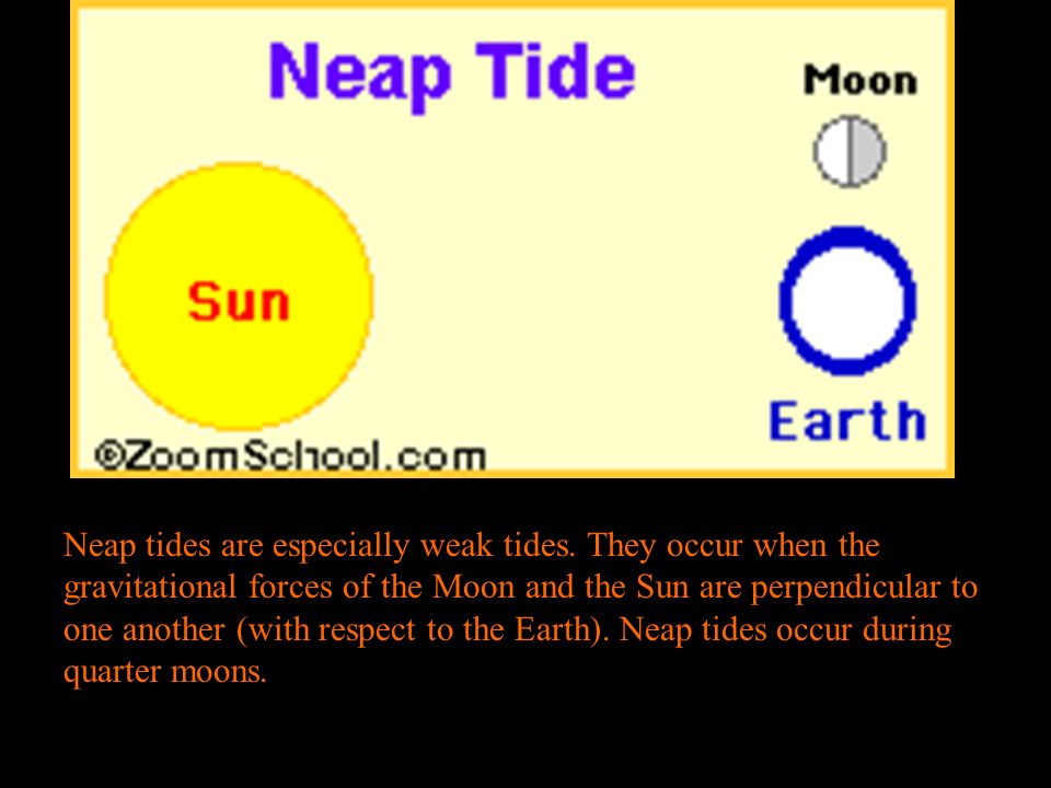 Neap tides are especially weak tides.