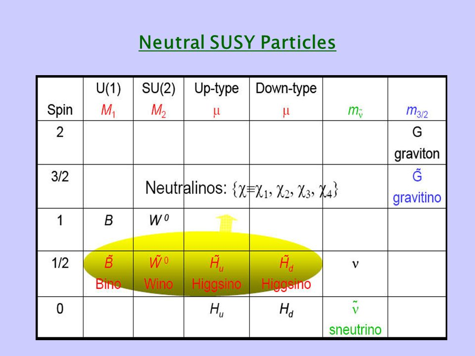 Neutral SUSY Particles