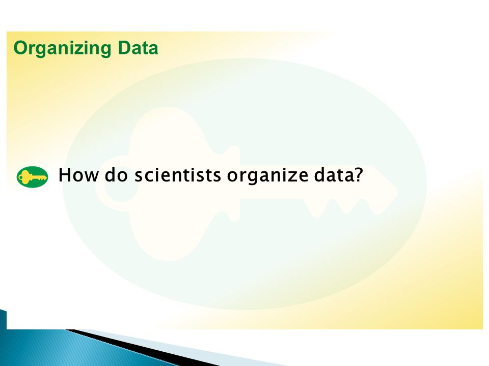 2 how do scientists organize data