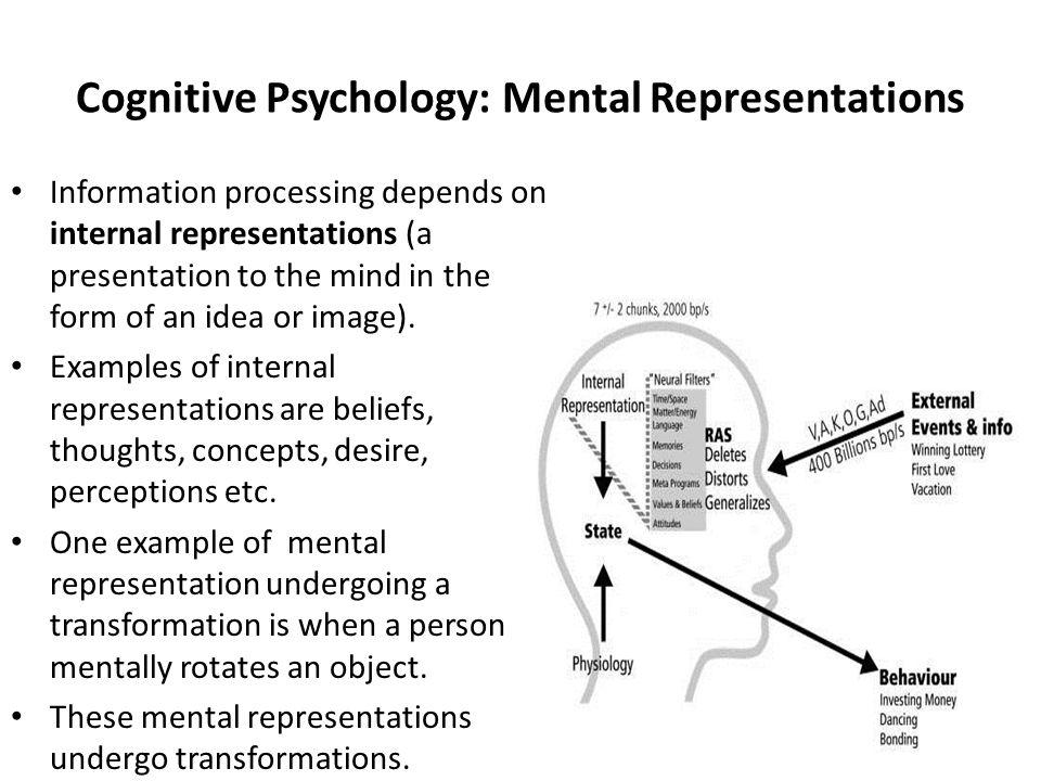 Cognitive Neuroscience Chapter 3 Methods of Cognitive