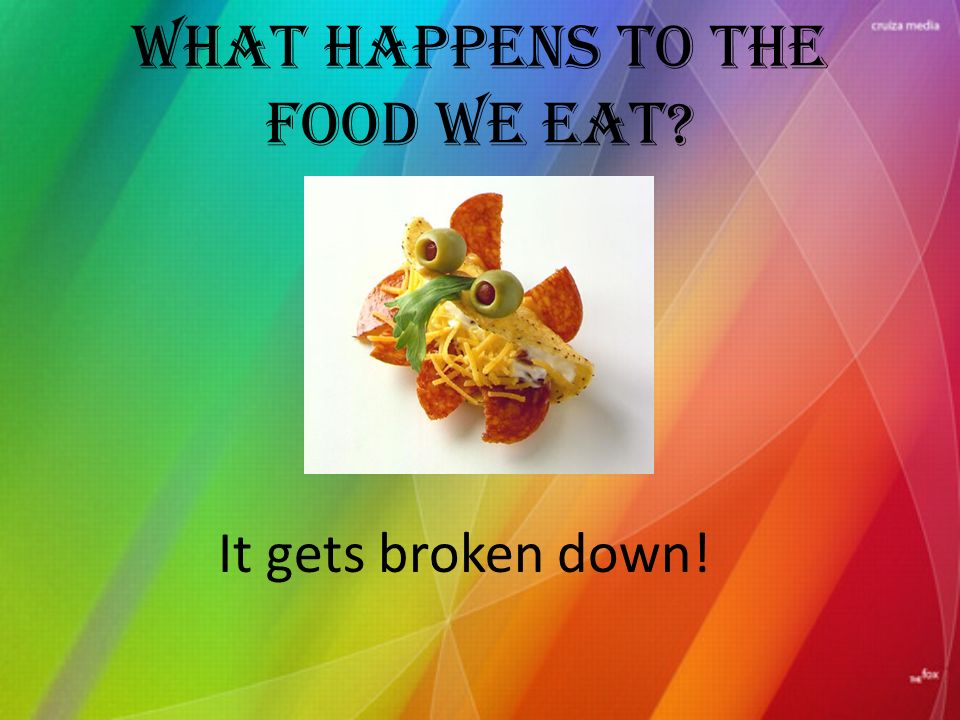 What happens to the food we eat It gets broken down!