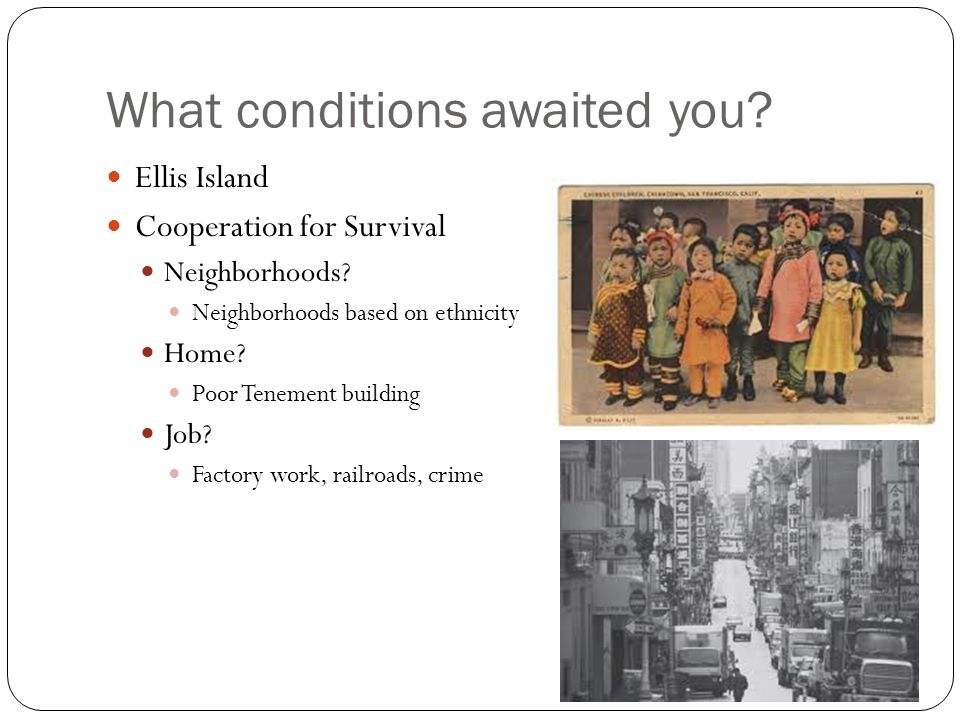 What conditions awaited you. Ellis Island Cooperation for Survival Neighborhoods.