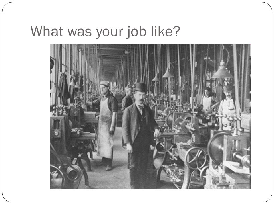 What was your job like