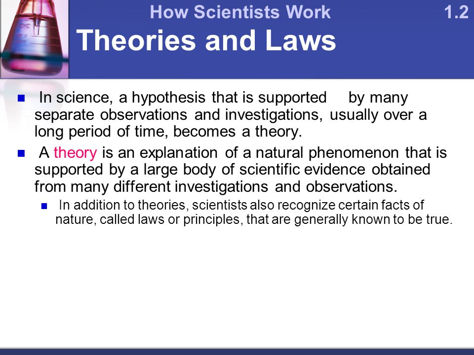 Theories and Laws In science, a hypothesis that is supported by many separate observations and investigations, usually over a long period of time, becomes a theory.