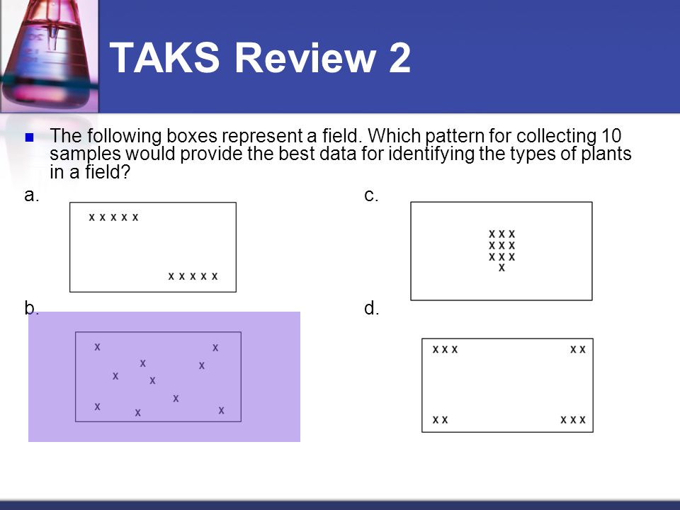 TAKS Review 2 The following boxes represent a field.