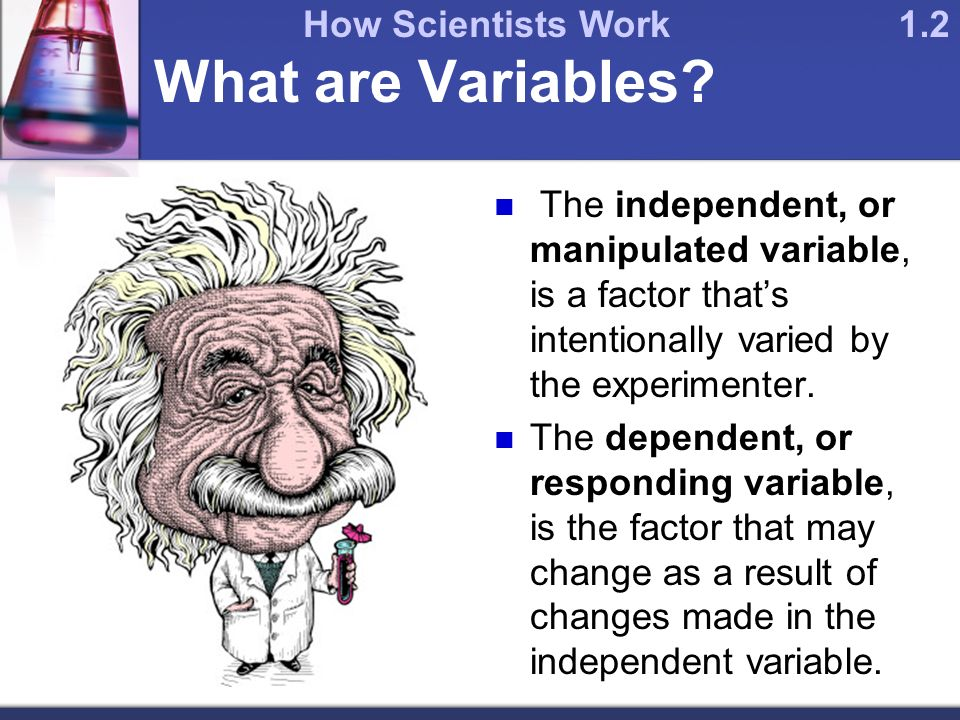 What are Variables.