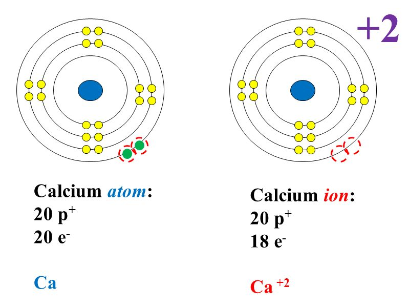 Number Of Protonsatomic Number Number Of Neutronsatomic Mass