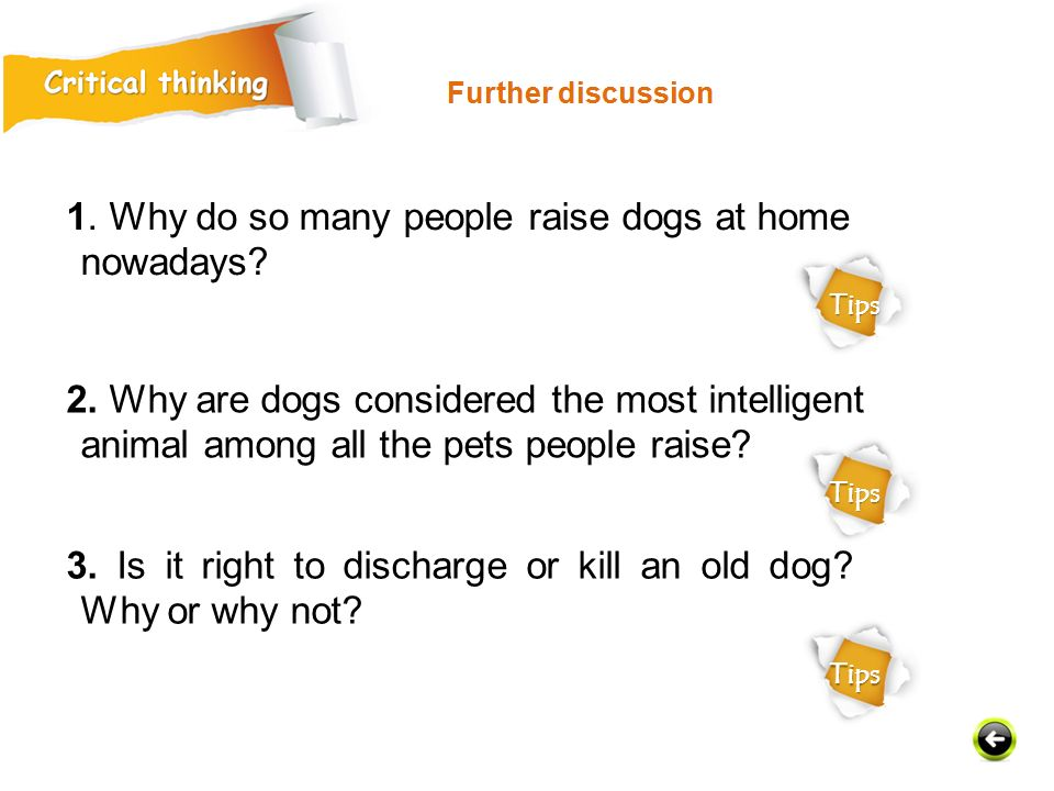 1. Why do so many people raise dogs at home nowadays.