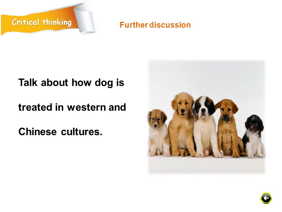 Talk about how dog is treated in western and Chinese cultures.