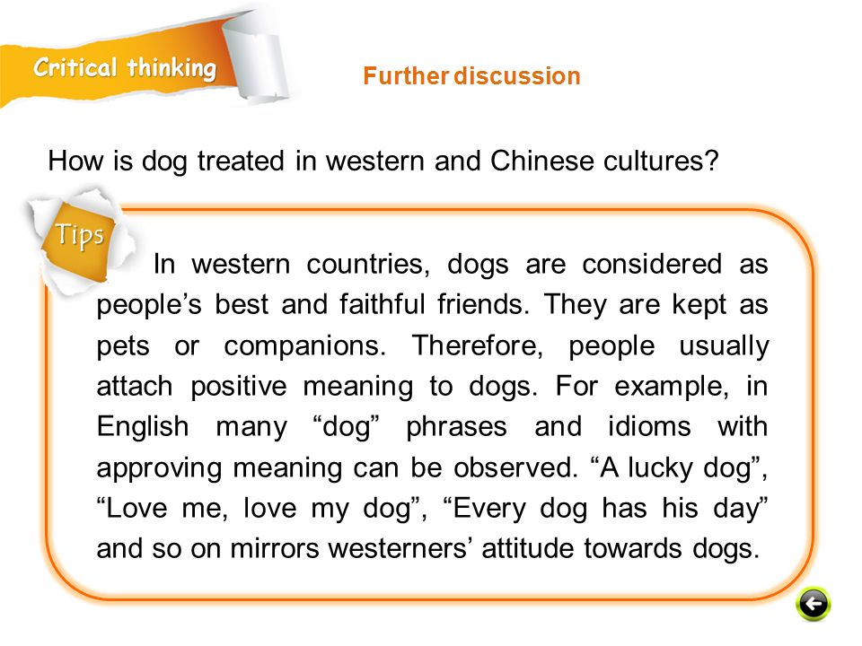 In western countries, dogs are considered as people's best and faithful friends.
