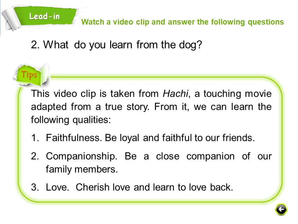 This video clip is taken from Hachi, a touching movie adapted from a true story.