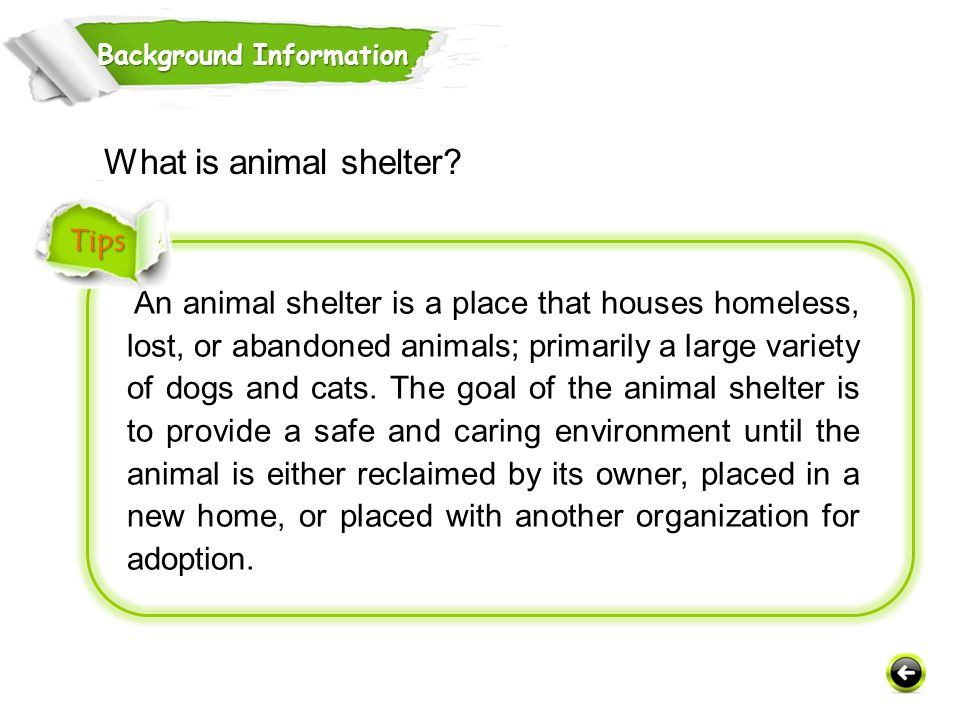 An animal shelter is a place that houses homeless, lost, or abandoned animals; primarily a large variety of dogs and cats.