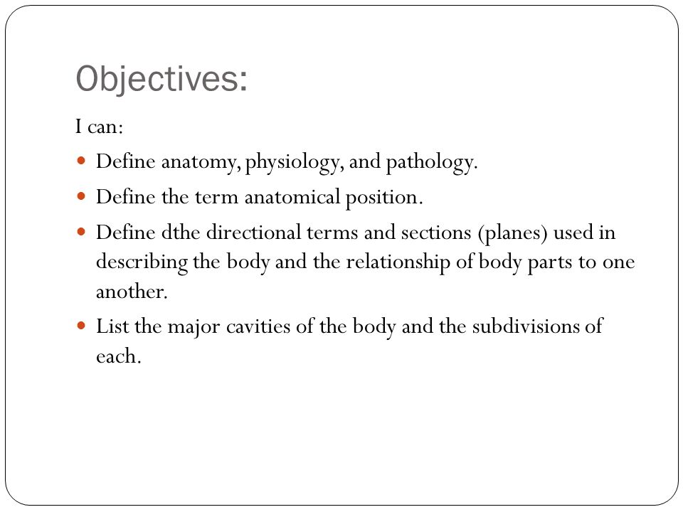 Chapter 2 Medical Terminology Mrs Spearman Room 300 The Human Body