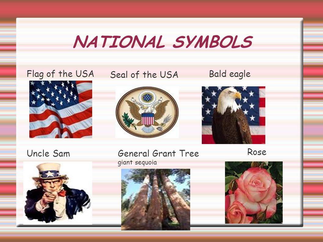 United States Of America Stars And Stripes Flag Tytu The