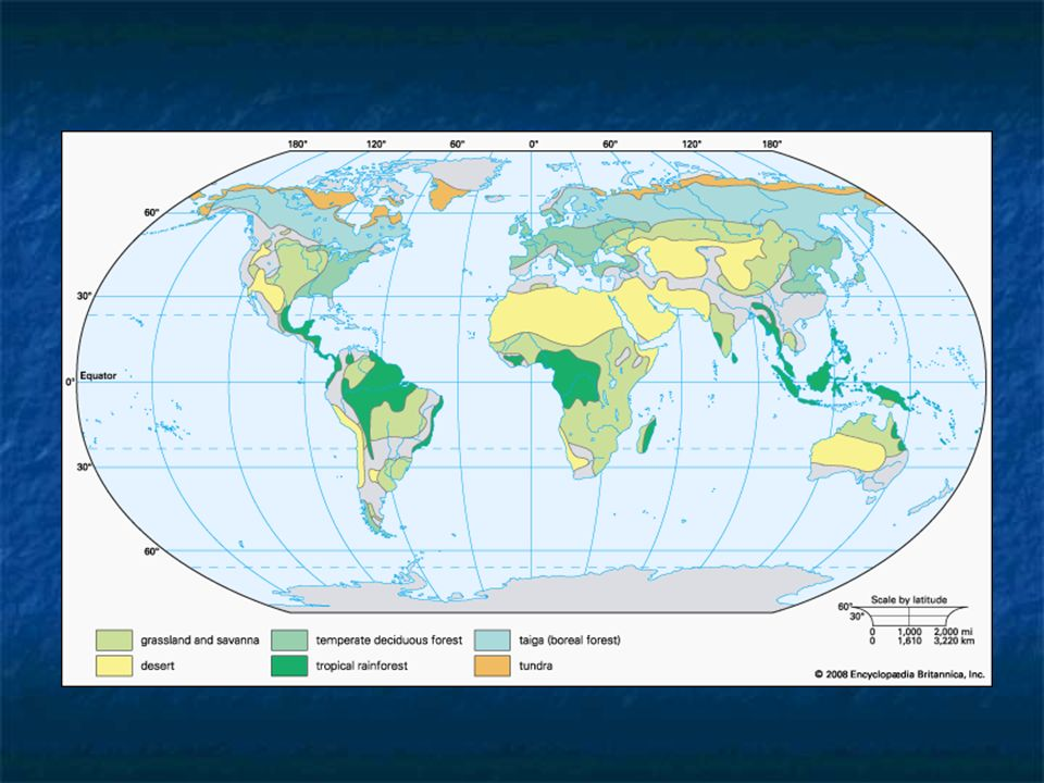 Living things and their environment ppt video online download 25 grassland biome map 3 location midlatitudes interiors of continents climate cool winter hot summer cm of precipitationyear soil rich topsoil gumiabroncs Gallery