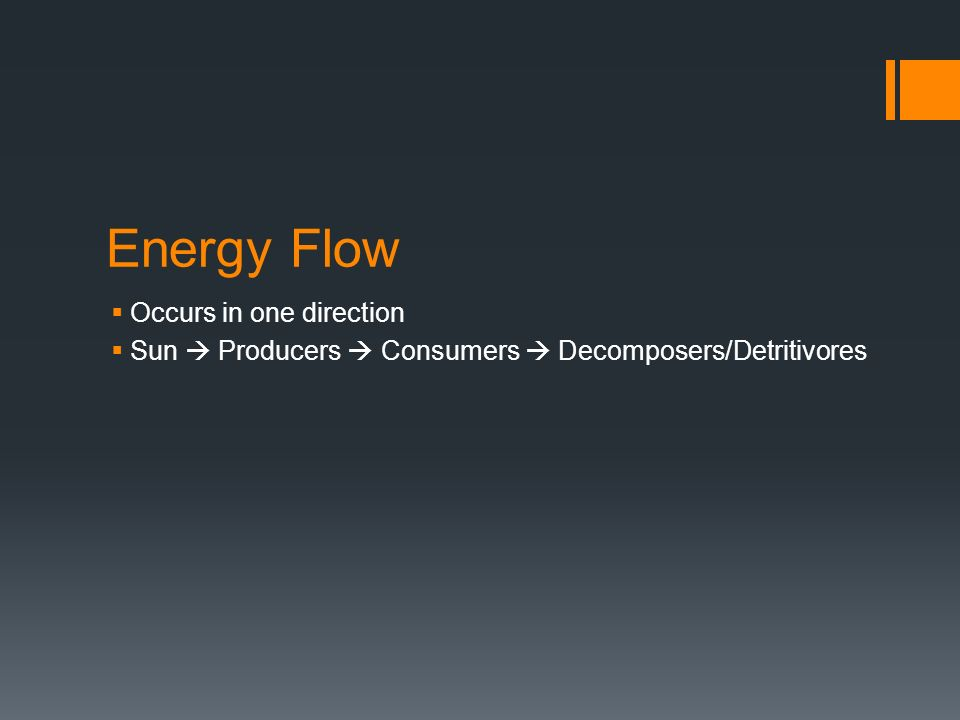 Energy Flow  Occurs in one direction  Sun  Producers  Consumers  Decomposers/Detritivores