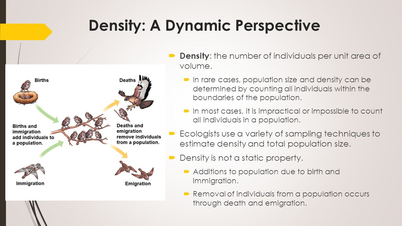 dynamic biological processes influence population density